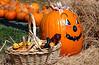 Pumpkins 3662