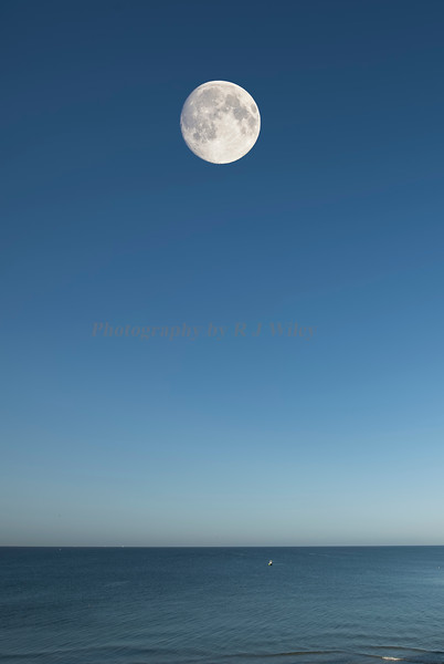 Moon over the Gulf 2507
