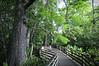 Boardwalk 2207 c