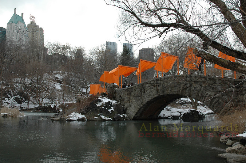 The bridge in Central park, New York city.