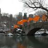 The bridge in Central park, New York city.