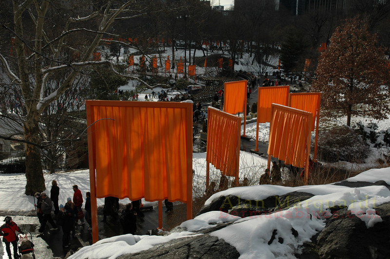 3.Central park, New York city..