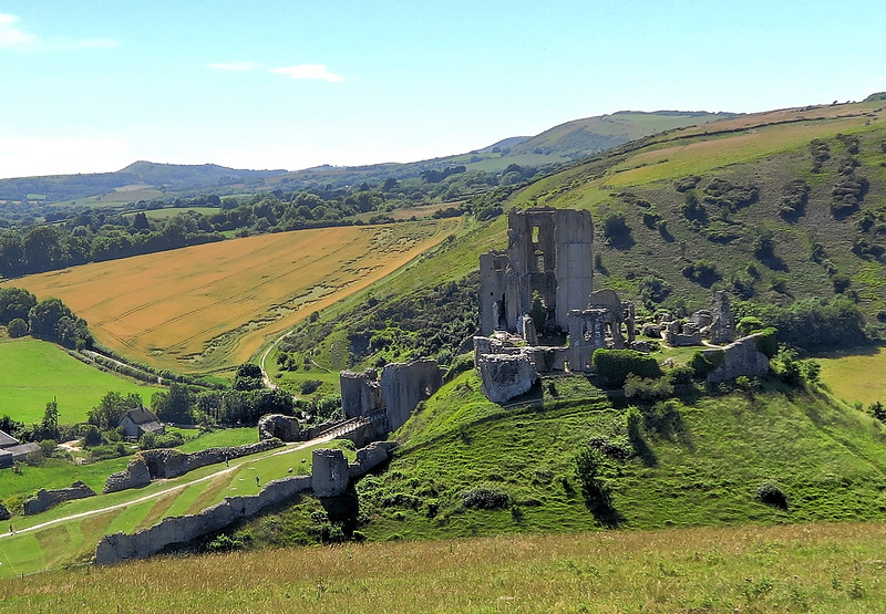 Having walked westward along the ridge we reach Corfe Castle and a steep climb down to the village.