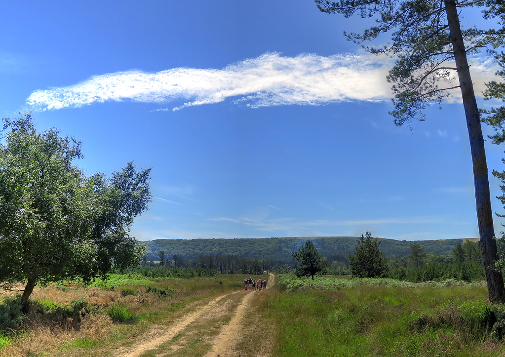 The group walks across Newton Heath.   We are destined to climb up onto the ridge beyond.