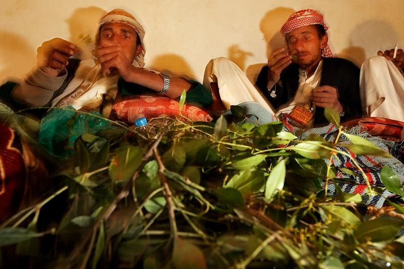 Men chewing qat.
