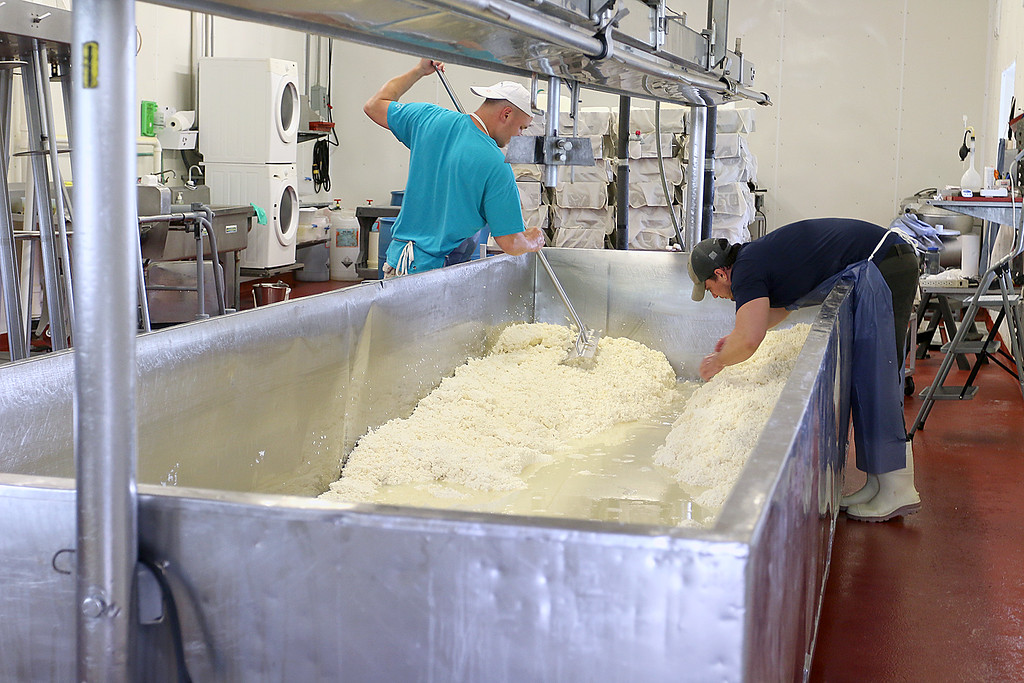 . Jake Catlin, on left, the owner of Smith Country Cheese Farm in Winchendon and one of his employees make cheese right on sight from milk from the two hundred cows they have on the farm. SENTINEL & ENTERPRISE/JOHN LOVE