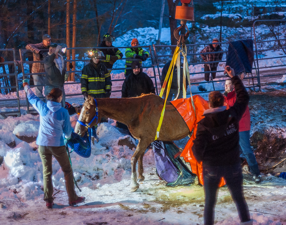 . Veterinarian Dr. Caitlin Eaton (light blue jacket) gestures to the operator of a boom truck that righted Hobbes the horse who fell into a stream in his paddock on Turner Lane in Templeton. Templeton firefighters, police and Animal Control all assisted in extricating and righting Hobbes. SENTINEL&ENTERPRISE/ Jim Marabello