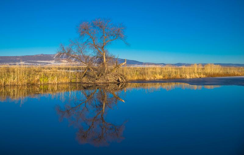 7 Tule Lake