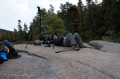 waiting on the moose; photo by connieBaxter State Park, Maine 10/2010