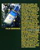 ACQUA DI PARMA Blu Mediterraneo Bergamota di Calabria<br />  2010 Spain (advertorial Joyce) 'Viaje sensorial'