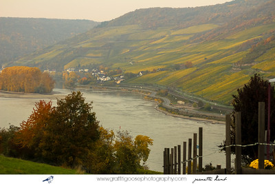 AM-RHEIN and BURG-REICHSTEIN,  Germany, Jeanette Lamb, Graffiti Goose Photography, 2015
