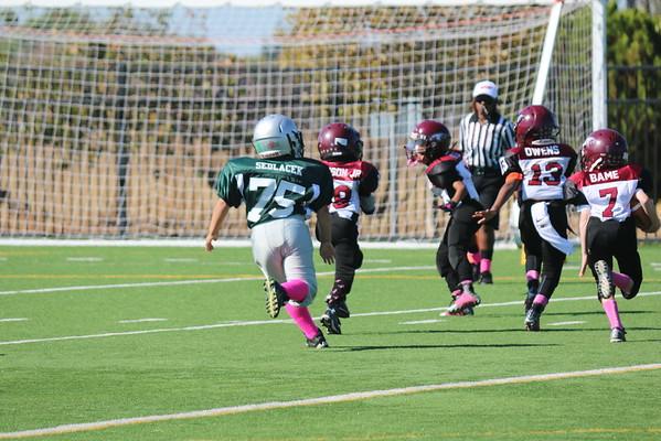 Jr. Hawks 10-10-2015