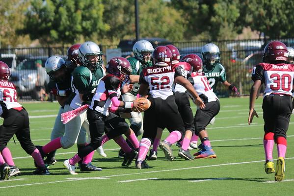 Jr Hawks 10-2015