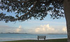 Bay of Islands 2009_2722_edited-1