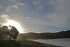 Bay of Islands 2009_2719_edited-1