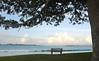 Bay of Islands 2009_2721_edited-1