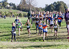 Cant XC 2010-13