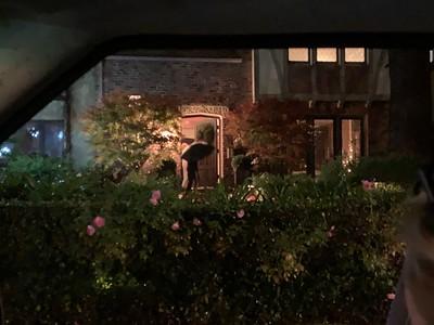 Ryder present drop off at Violet Gibbs house