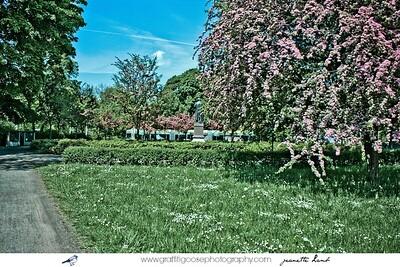 derClara Zetkin Park