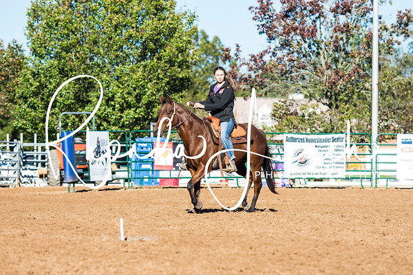 AAA Ranch & Arena Exhibition 10-27-17