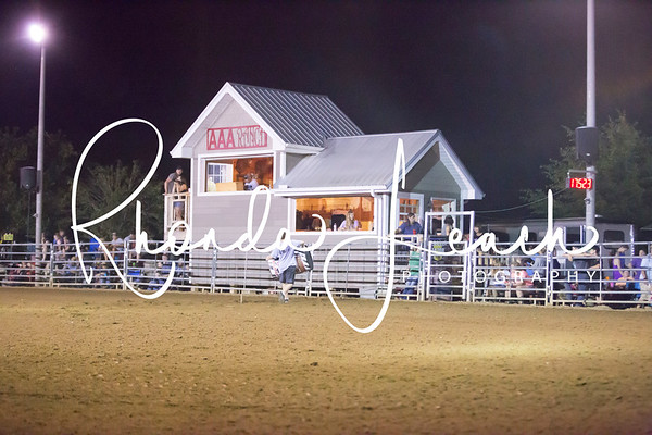 AAA Ranch and Arena 7-15-17 Open