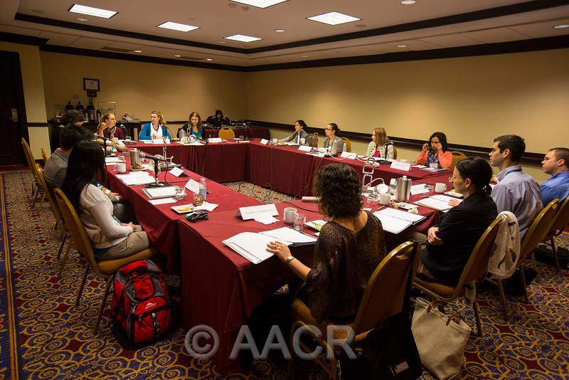 Attendees,  Associate Member Council Meeting 2