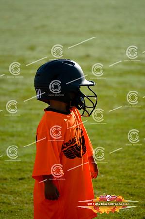 Sat 24th - Tee Ball Game 1