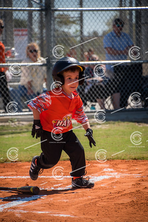 T-Ball Game 2 - March 3rd