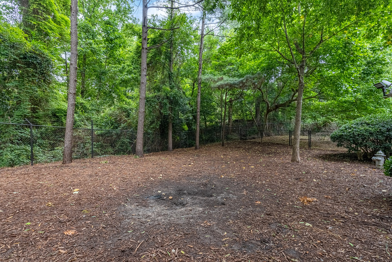 The Marq at Brookhaven Dog Park 2