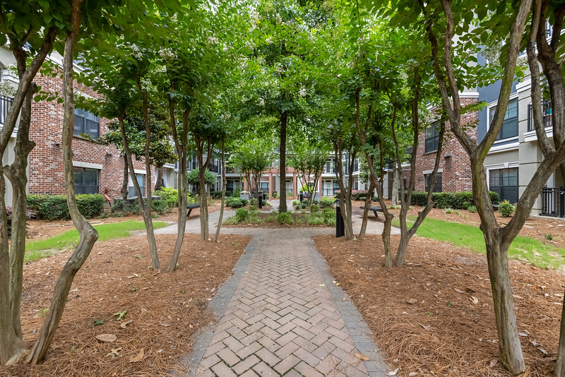 Marquis Midtown District Courtyard Two