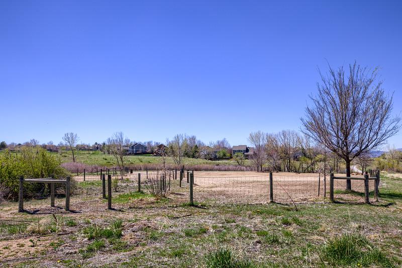 Foothills Park 12