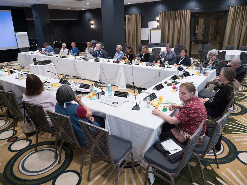 Attendees - AAS Board of Trustees & Strategic Assembly