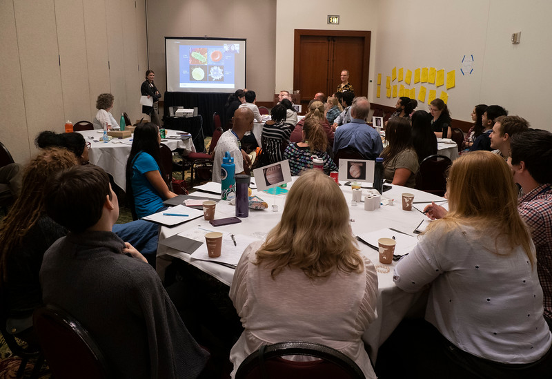 Attendees work together - Workshop: AAS Astronomy Ambassadors Workshop: Techniques Resources for Effective Public Engagement