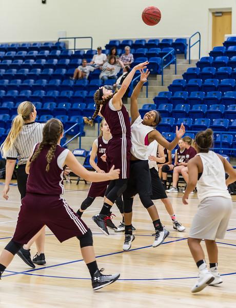 Lady Lopes vs Wellington Summer Basketball, 6-23-2016
