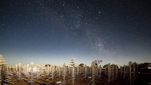 Moonlit Sentinels by Pete Wheeler