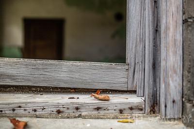Abandoned - Window Sill