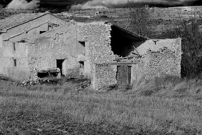 ©Ricardo G Delabat