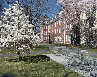 HBS campus 10