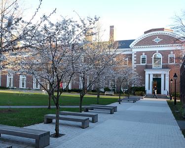 HBS campus 01