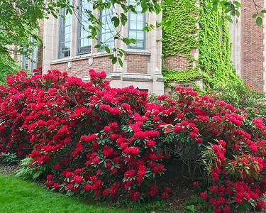 UW Campus 07