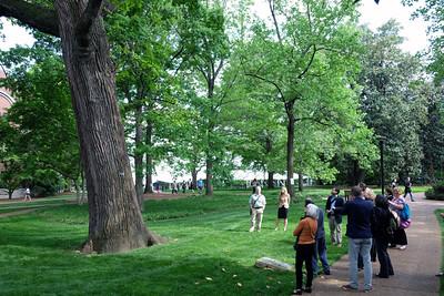 Arboretum tour 03
