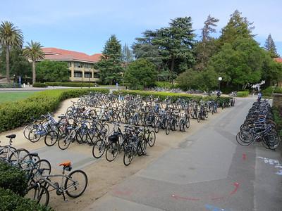 Stanford campus 07