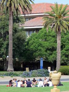 Stanford campus 04