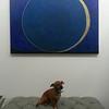 Meditation on Space IV: Fiat Lux installation