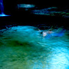 Ancora, la nuotatrice, Ginestrelle