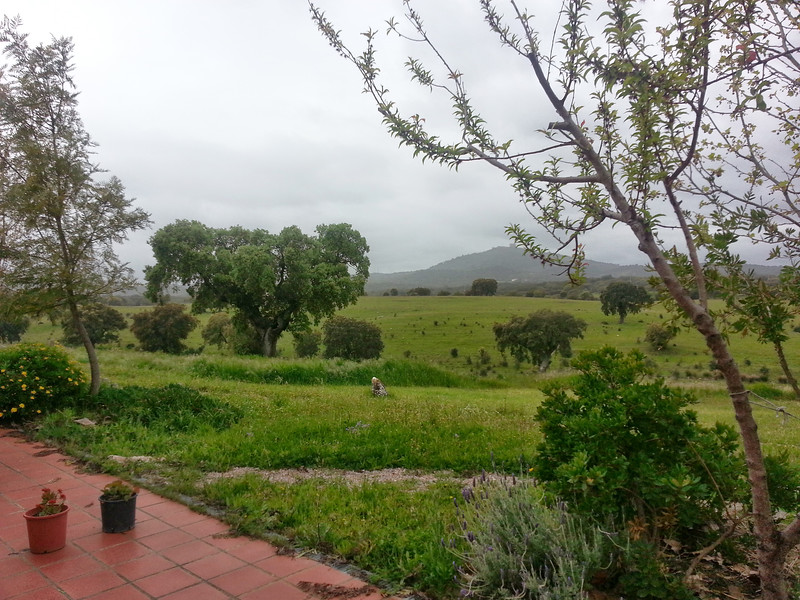 View of Evoramonte from my terrace in the rain