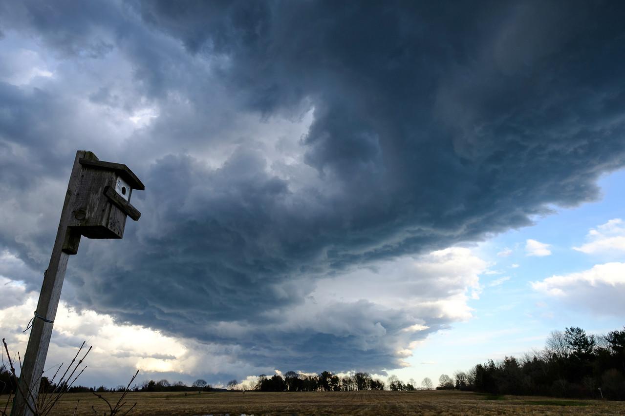 Storm Trail