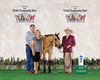 (12) Gina Loper & Dun Going West - (showing for Gallanger)<br /> Class Winner - NSBA Yearling Longeline