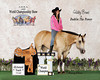 (19) Haley Bruns & Dublin The Power<br /> World Champions Youth Barrel Racing