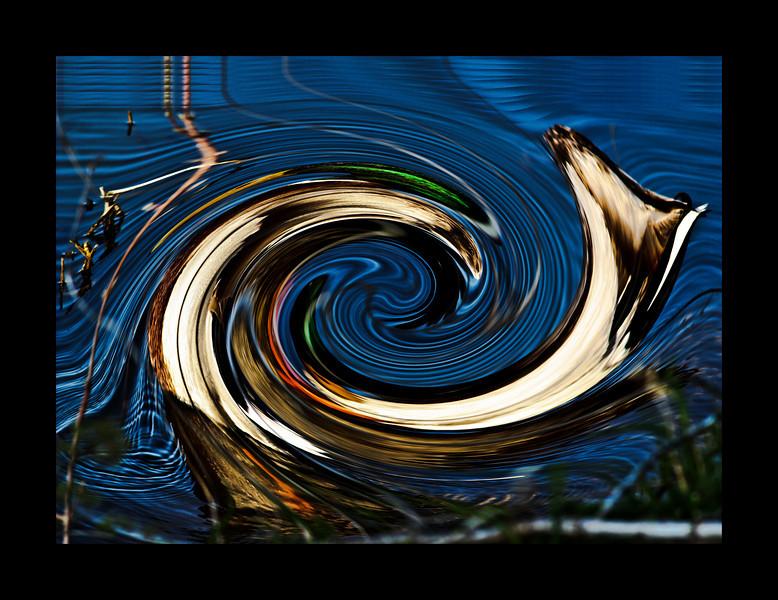 Twirling Mallards ~
